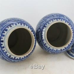 Chinese Old Pair Blue & White Twined Peony Flowers Pattern Porcelain Temple Jars