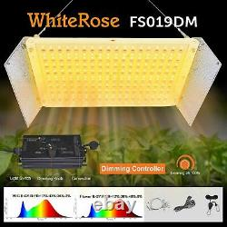 WhiteRose Dimmable LED Grow Light 2000W Full Spectrum With UV IR Flower Booster